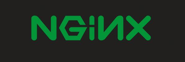 upload file on nginx – part 2: MySQL PAM and nginx config